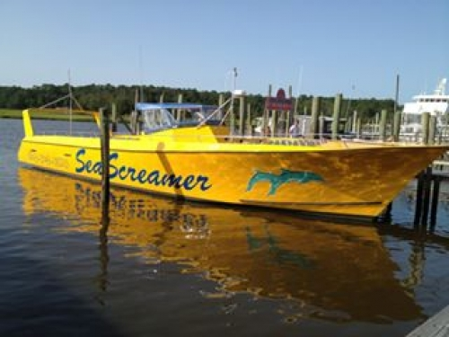Sea Screamer